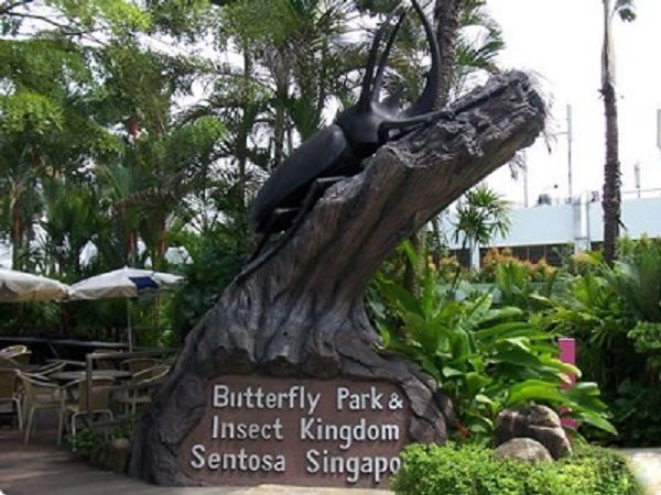 Butterfly Park And Insect Kingdom